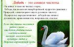Бойные красавцы – андижанские, армавирские и благодарненские голуби – всё о домашней птице