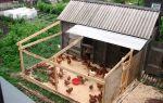 Как построить несушкам комфортный и качественный сарай самостоятельно? – всё о домашней птице