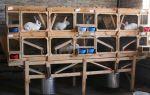 Как построить клетку для кроликов в 2 яруса? – всё о домашней птице